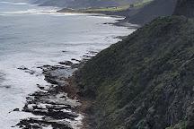 Cape Patton Lookout, Kennett River, Australia