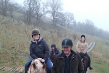 Lakeland Pony Trek, Windermere, United Kingdom