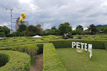 Pete Maze, Khao Yai National Park, Thailand