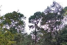 Ekopark Tapalpa, Tapalpa, Mexico