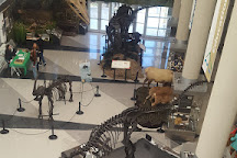 Virginia Museum of Natural History, Martinsville, United States