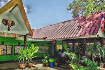 Phuchada Safari, Rawai, Thailand