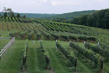 Sunset Meadow Vineyards, Goshen, United States