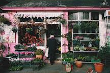 Herne Hill Market, London, United Kingdom
