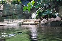 Loveland Living Planet Aquarium, Draper, United States