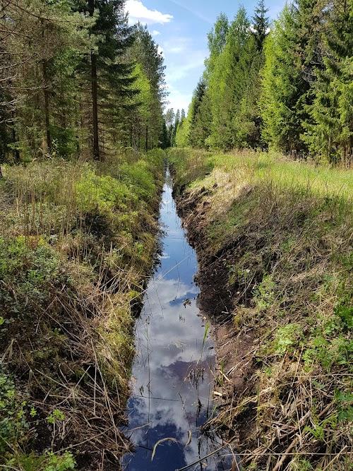 Mukri loodusrada