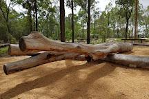 Karawatha Forest Discovery Centre, Brisbane, Australia