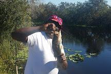 Blue Cypress Lake, Florida, United States
