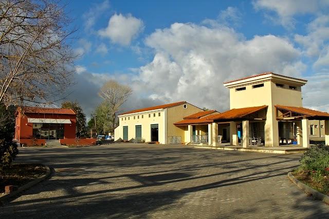 Tselepos Winery S.A.