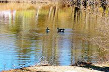 Pierson Park, Tarrytown, United States