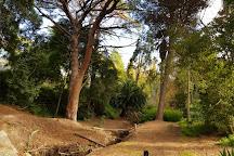Michael Perry Botanic Reserve, Burnside, Australia