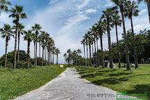 Geumneung Eutteumwon Beach, Jeju, South Korea