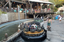 Grizzly River Run, Anaheim, United States