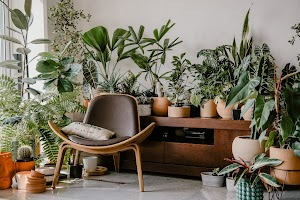 rePlanto | Plantas y macetas