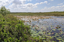 Tigertail Airboat Tours, Miami, United States