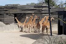 Parc Zoologique de Paris, Paris, France