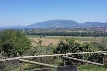 Romanelli Agricola, Montefalco, Italy