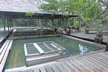 Kampung Panchor Hot Spring, Kuching, Malaysia