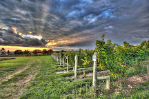 Three Brothers Wineries and Estates, Geneva, United States