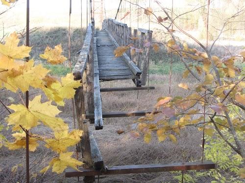 Tiltas per Mūšą