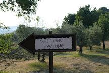 Vallone de Cecione, Panzano in Chianti, Italy