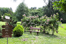 Sarvar Arboretum, Sarvar, Hungary