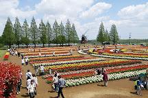 Akebonoyama Agricultural Park, Kashiwa, Japan