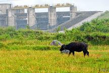 Karapuzha Dam, Kalpetta, India
