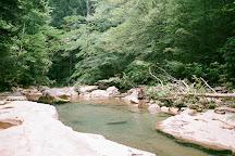 Big Soddy Creek Gulf, Soddy Daisy, United States