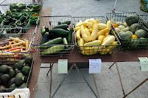 Sanibel Island Farmer's Market, Sanibel Island, United States