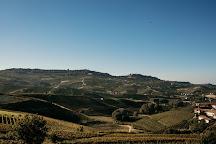 Amanda's Wine Adventures, Neive, Italy