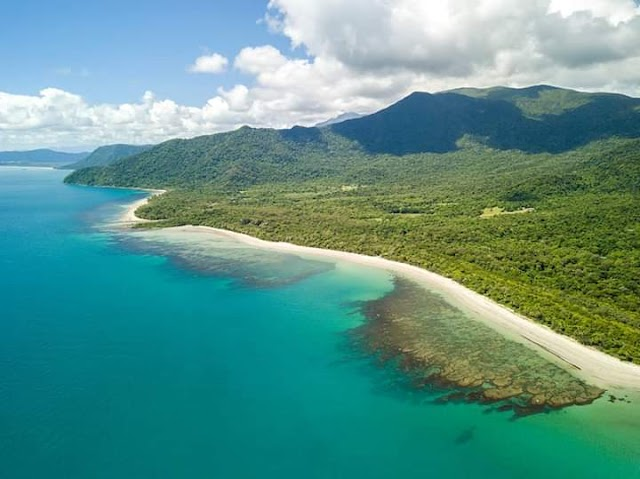 Cape Tribulation Information