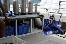 ABC Scuba Diving Port Douglas, Port Douglas, Australia