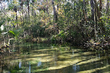 Santa Fe River, Florida, United States