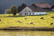 Lac des Tailleres, La Brevine, Switzerland
