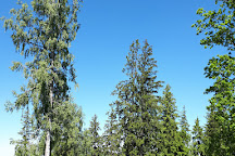 Vaike Munamagi Hill, Nupli, Estonia