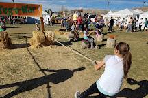 Cornbelly's Corn Maze & Pumpkin Fest, Lehi, United States