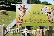 Noah's Ark Zoo Farm, Wraxall, United Kingdom