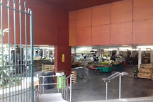 Mercado da Graca, Ponta Delgada, Portugal