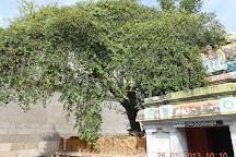 Akshyalingaswamy Temple, Nagapattinam, India
