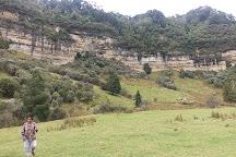 Eastern Taranaki Experience, Stratford, New Zealand