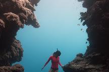The Underwater Academy, Bondi, Australia