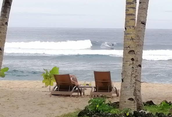 Pacifico Bigwish siargao