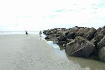 Cumberland Island National Seashore, Cumberland Island, United States