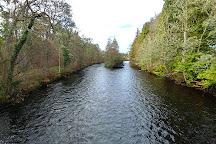 Ness Islands, Inverness, United Kingdom