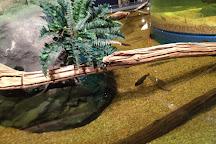Greater Cleveland Aquarium, Cleveland, United States