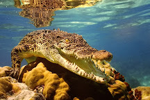 Aquarium Finisterrae, La Coruna, Spain