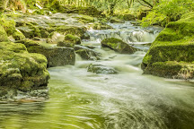Golitha Falls, Liskeard, United Kingdom