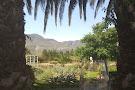 Springfontein Wine Estate