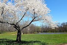 Duke Island Park, Bridgewater, United States